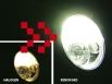 HB4 Xenon lamp 12V/55W (2 pieces)
