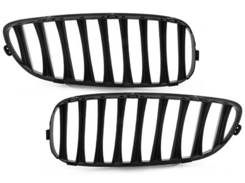 **Front grill BMW E89 Z4 09+ _ glossy black